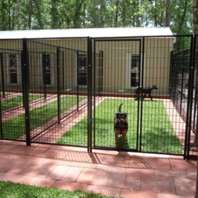 Dog And Cat Kennels Near Me